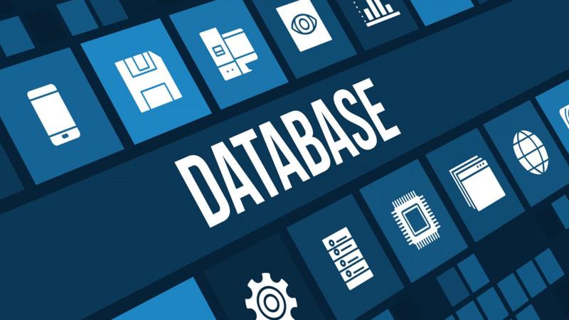 ระบบฐานข้อมูล / Database Systems