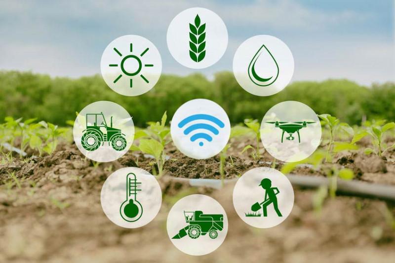 ระบบควบคุมอัตโนมัติทางการเกษตร / Automatic Control System for Agriculture